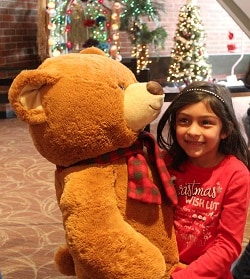 Teddy Bear Bash @ Union Colony Civic Center