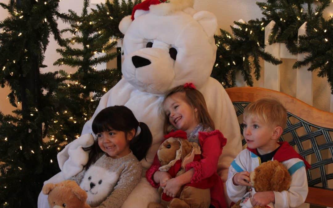 Teddy Bear Bash